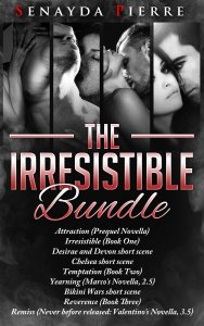 Irresistible Bundle Cover