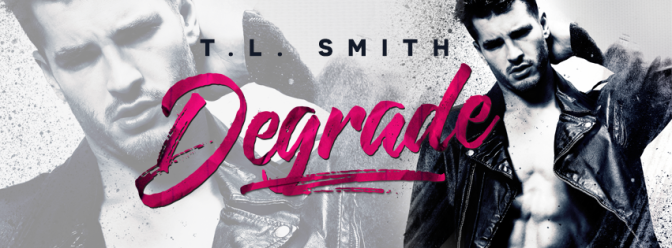28bfb-degrade-tl-smith-facebook-author-banner